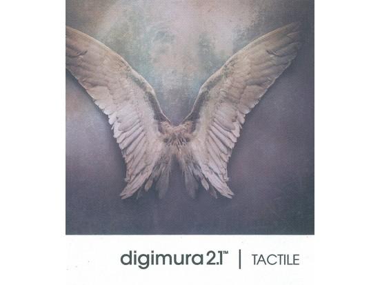 digimura 2.1 TACTILE