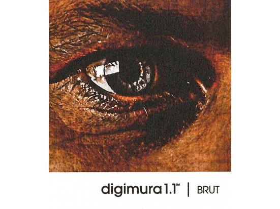 digimura 1.1 BRUT